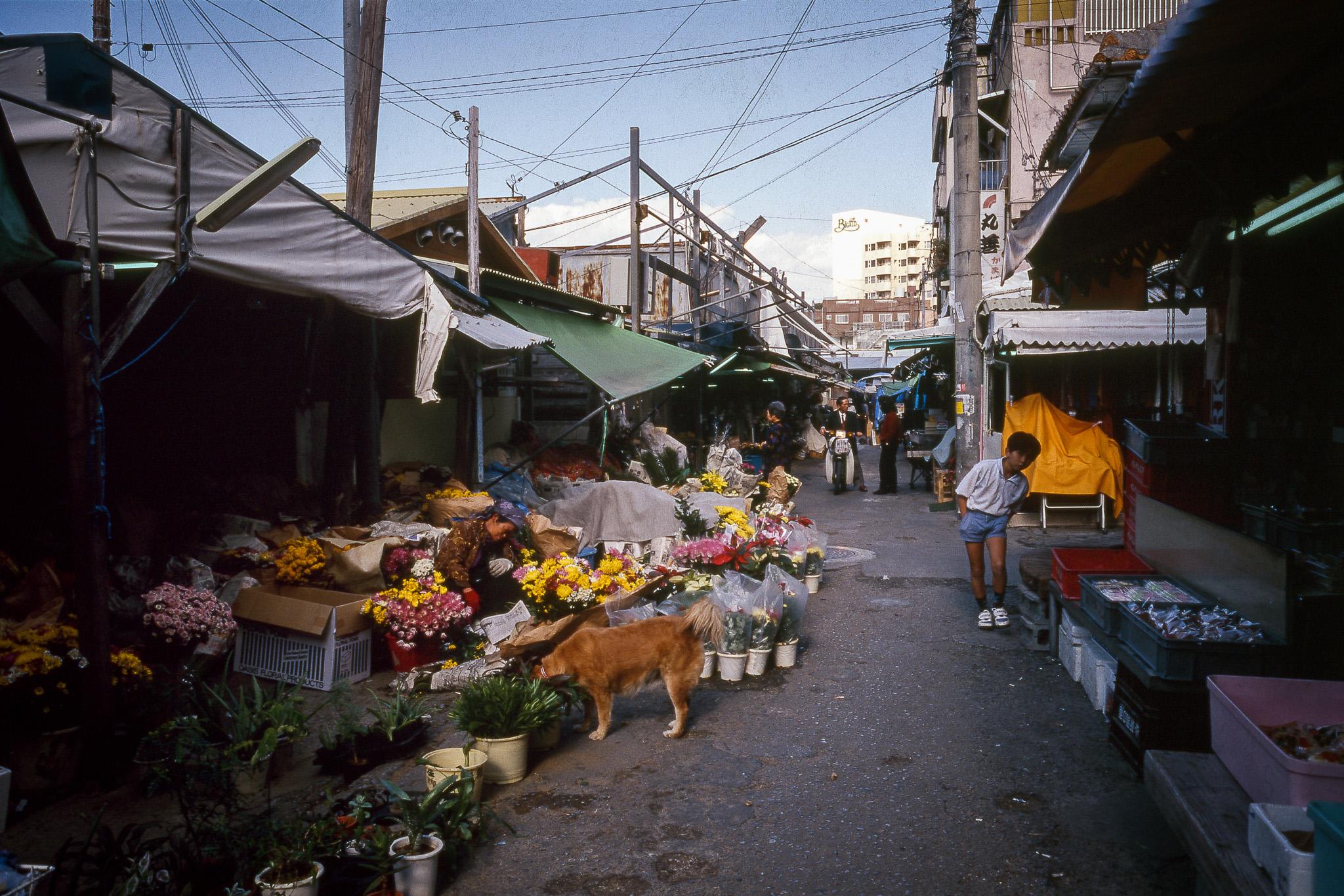 1997 沖縄那覇市020©松原豊